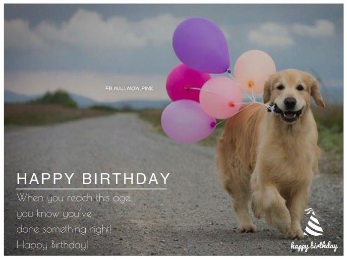 Happy Birthday Wishes Dog Ballons