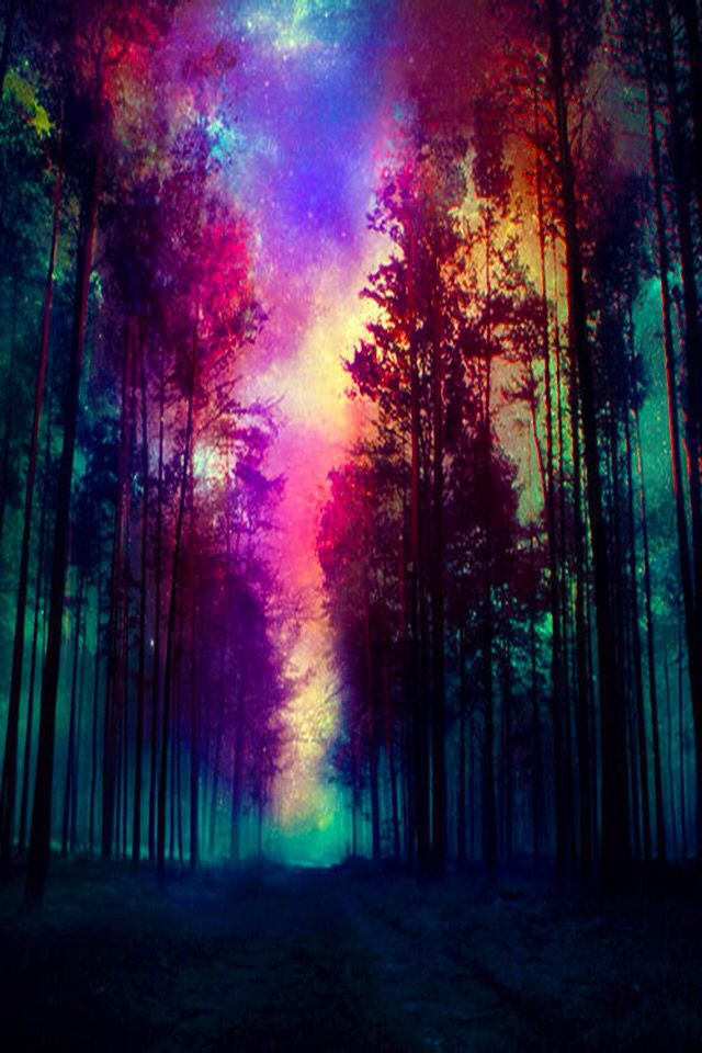 Coolest picture ever   Cool design ideas in 2019   Painting, Art, Magical Forest