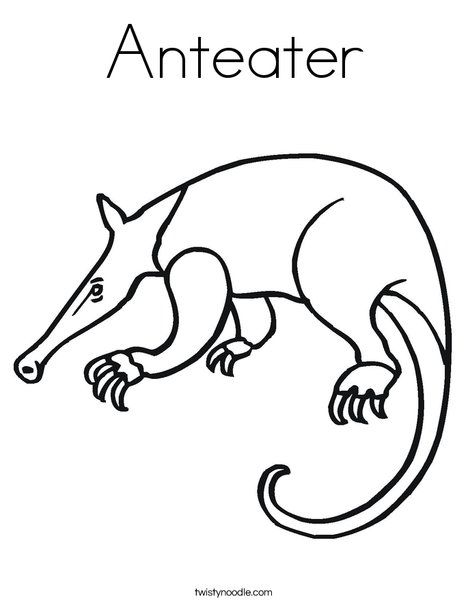 Anteater Coloring Page Twisty Noodle Coloring Pages Anteater