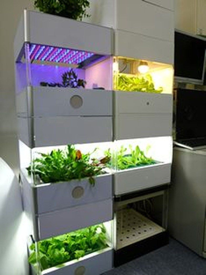Indoor Hydroponic Garden Ideas To Decorate Your House 06