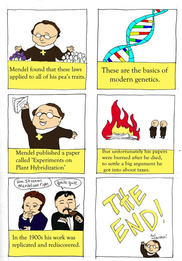 Gregor Mendel Page 4 By Sithdragon42 On Deviantart Patterns Of Inheritance Gregor Mendel Gregor Mendel Activities Study Biology