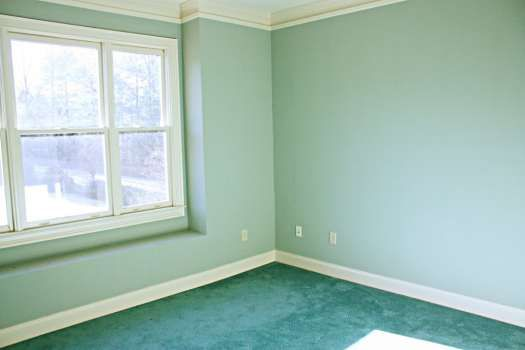 Image Result For Wall Colors With Green Carpet