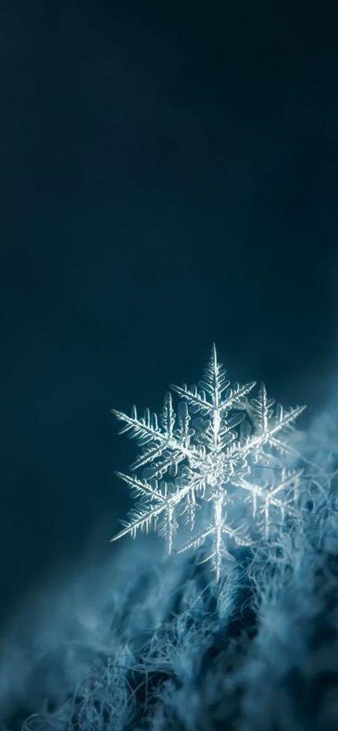Iphone X Beautiful Wallpaper 11252436 Christmas Background