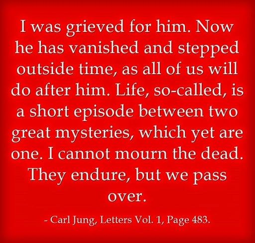 I was grieved for him. Now he has vanished and stepped outside time, as all of us will do after him. Life, so-called, is a short episode between two great mysteries, which yet are one. I cannot mourn the dead. They endure, but we pass over. ~Carl Jung, Letters Vol. 1, Page 485.