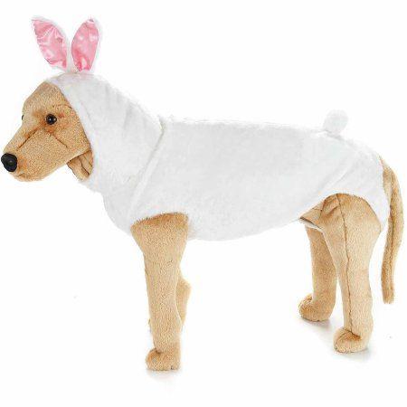 Pets Pet Costumes Pet Rabbit Pets