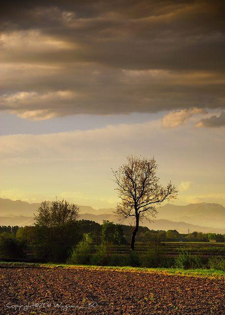 Landiona, Piedmont, Italy