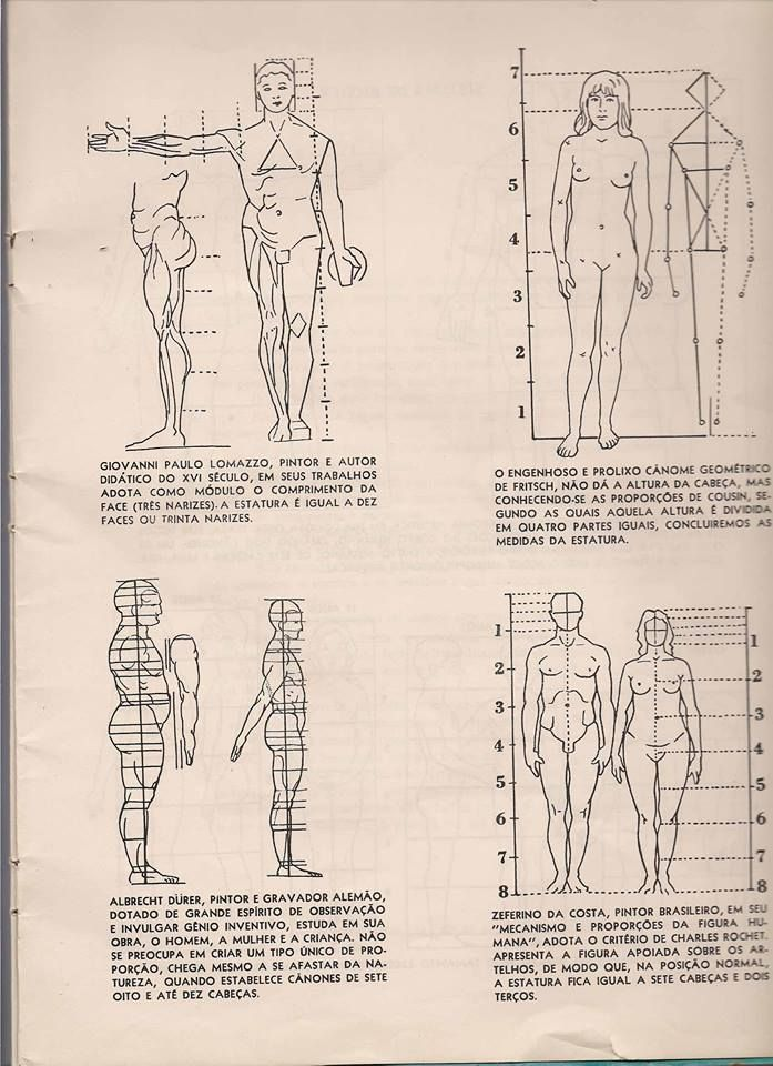Facebook With Images Anatomy Sketches Human Anatomy Drawing