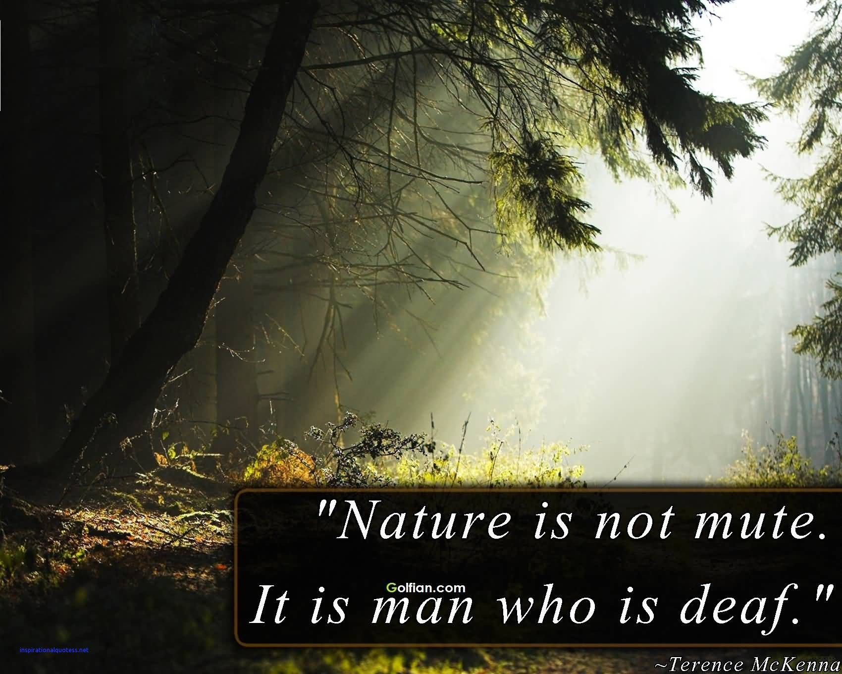Inspiring Nature Quotes Nature Quotes Nature Nature Quotes Inspirational