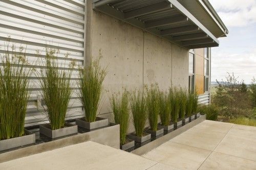 exterior materials; potted grasses