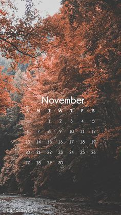 Nature scene beautiful red trees, pink tree photography fall sceneNovember calendar 2016 wallpaper you can download for free on the blog! For any device; mobile, desktop, iphone, android! – Apeksha Srivastava