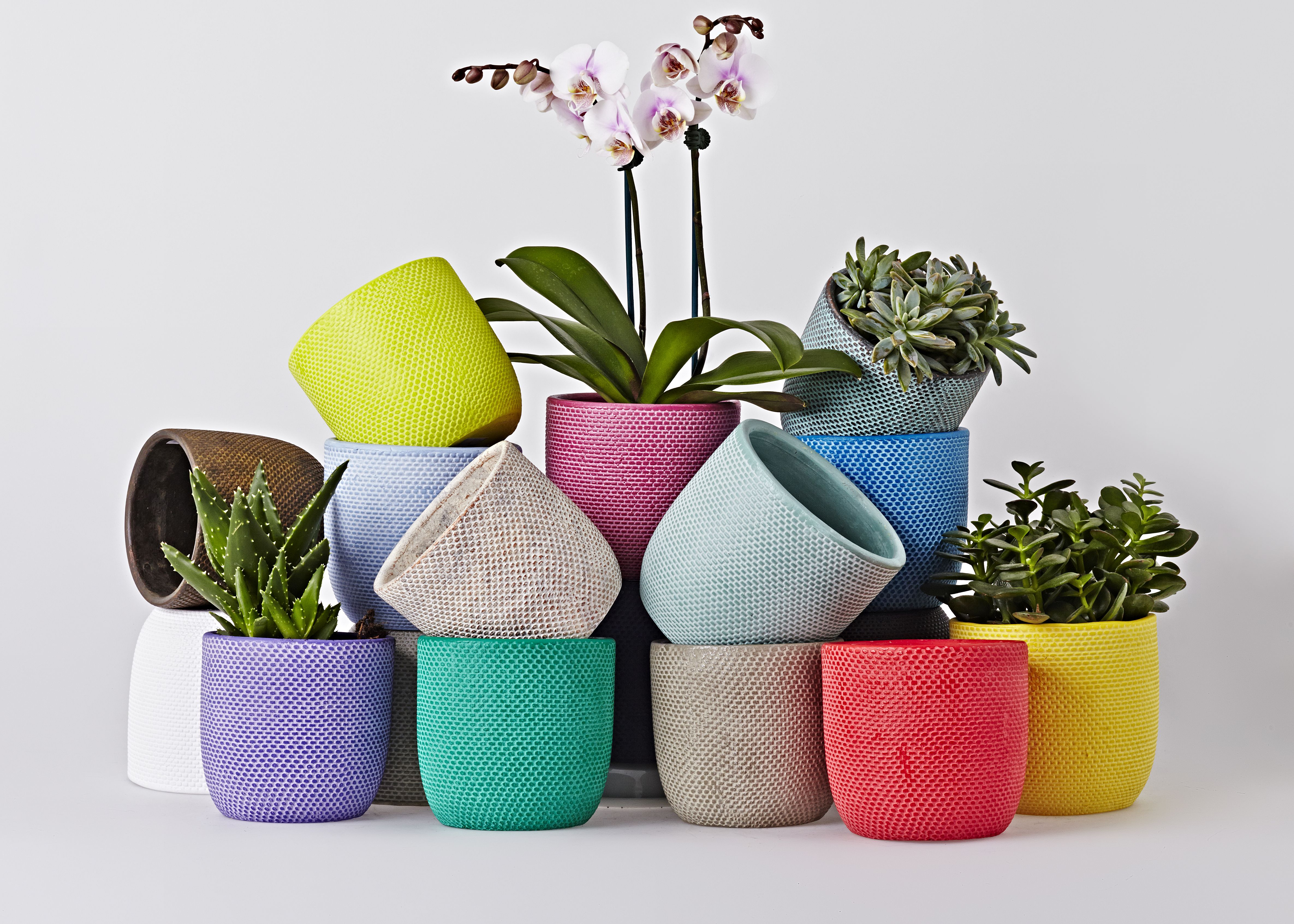 Add a pop of colour to your home with these gorgeous flower pots add a pop of colour to your home with these gorgeous flower pots workwithnaturefo