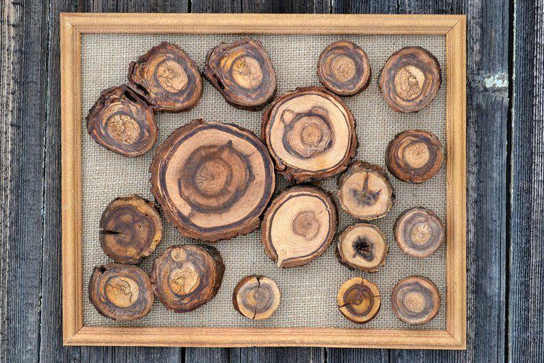 This Item Is Unavailable Etsy Tree Slice Art Wood Slice Art Tree Ring Art