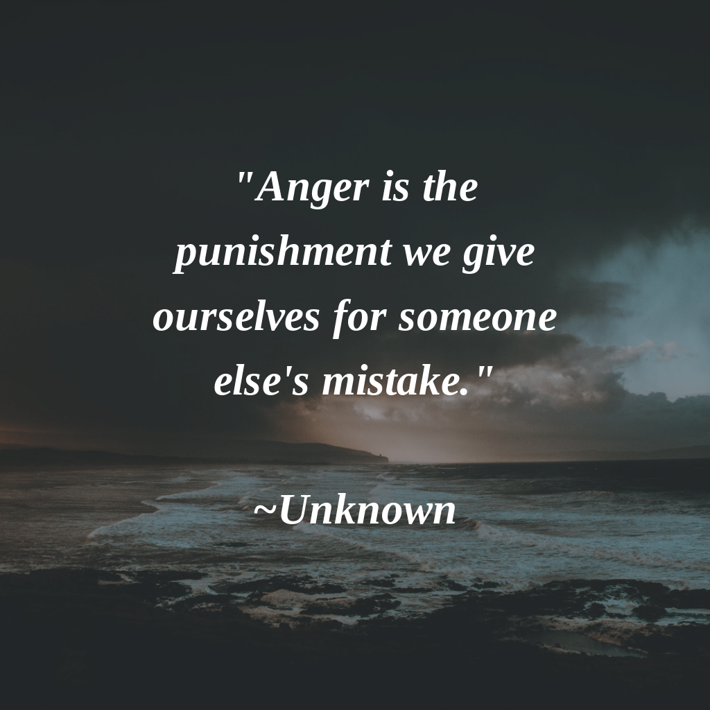 anger is the punishment we give ourselves for someone else s