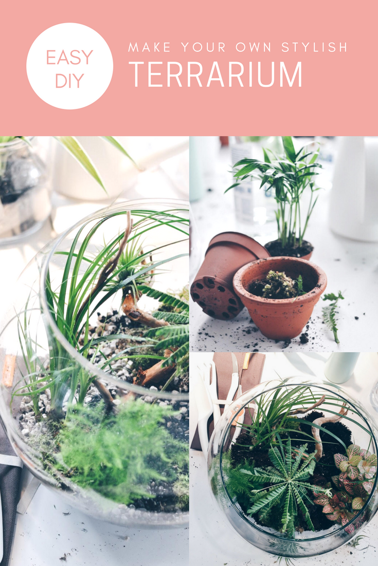 Love a good DIY project? Keep your house green this autumn and make your own Terrarium!