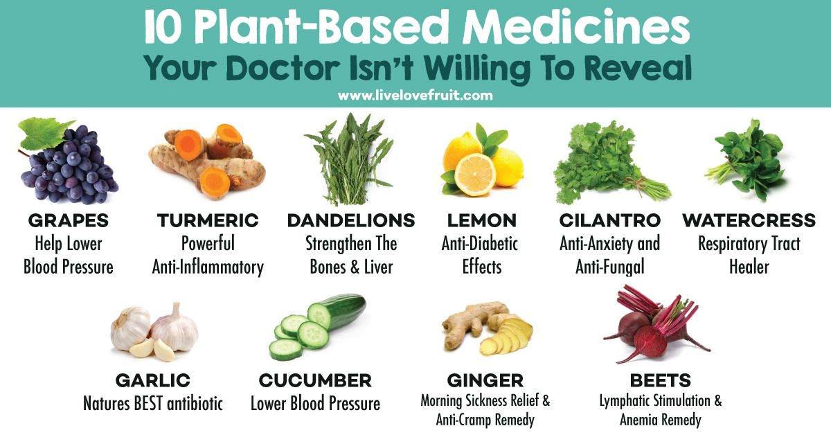 dr that prescribe plant based diet