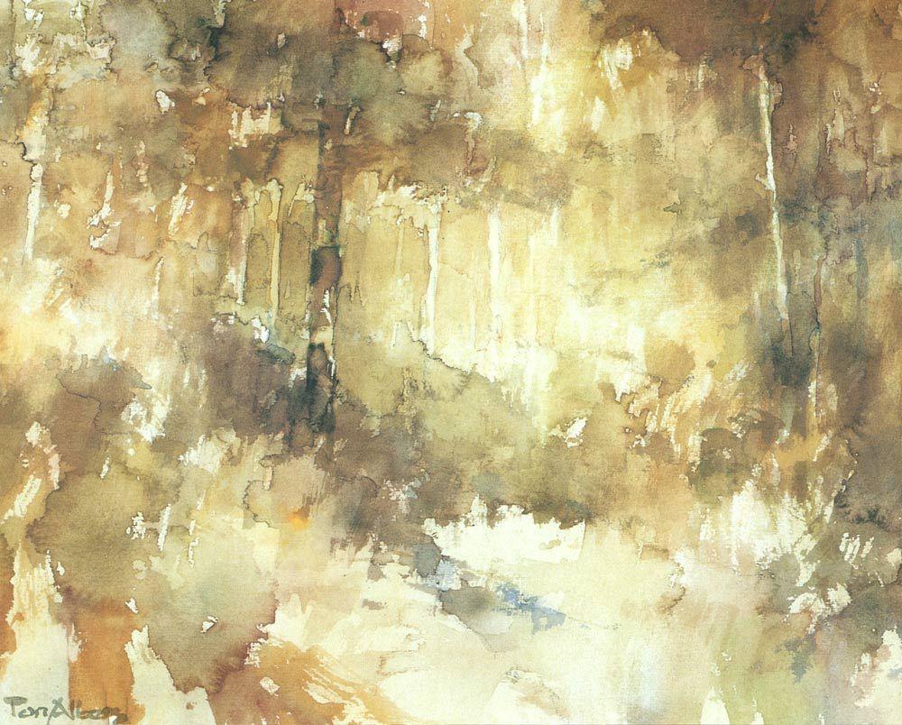 Herfstbos By Ton Albers Landschappen Galerij Landschappen