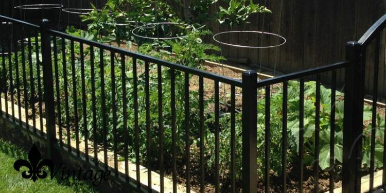Ordinaire Image Result For Wrought Iron Garden Fences