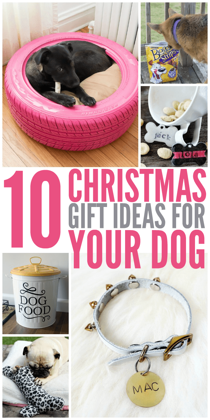 10 christmas gift ideas for your dog best of glue sticks and gumdrops pinterest hunde. Black Bedroom Furniture Sets. Home Design Ideas