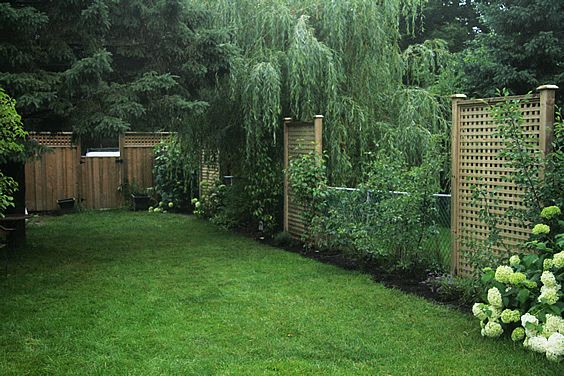Nice way to hide a chain link fence gardening pinterest screens fences and privacy fences - Garden ideas to hide fence ...