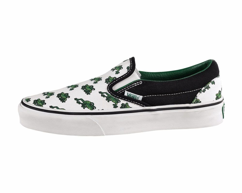 Best shoes of ever - frog Vans!!!!  62a046c8e