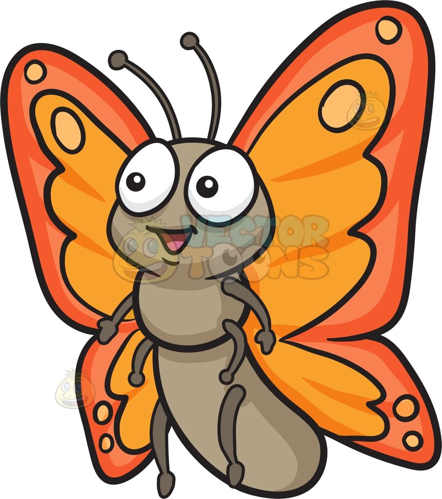 a cute butterfly with two tone orange wings big eyes butterfly rh pinterest com