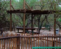 Day Visitor Picnic Site at Letaba Restcamp
