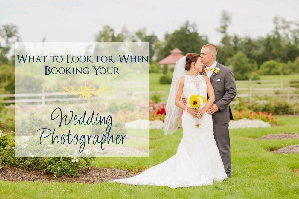 wedding picture locations akron ohio%0A Rustic wedding venues in Northeast Ohio  Loren Jackson Photography    photographer akron ohio   Loren Jackson Photography Blog Posts   Pinterest    Wedding