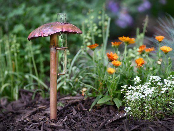 Solid Copper Mushroom Rain Gauge Rain Gauge Stuffed Mushrooms Perennial Garden