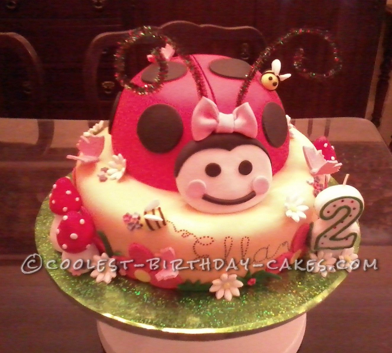 Coolest Ladybird Birthday Cake This website is the Pinterest of