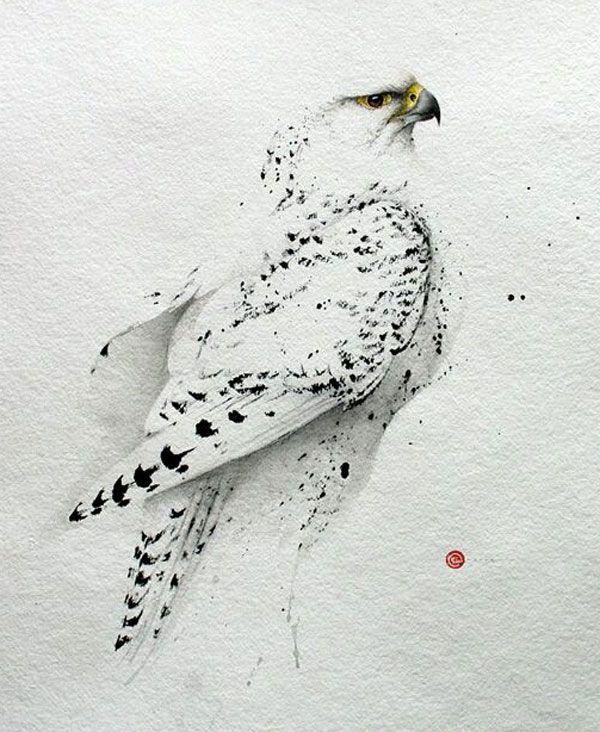 Lukisan Cat Air : lukisan, Lukisan, Burung