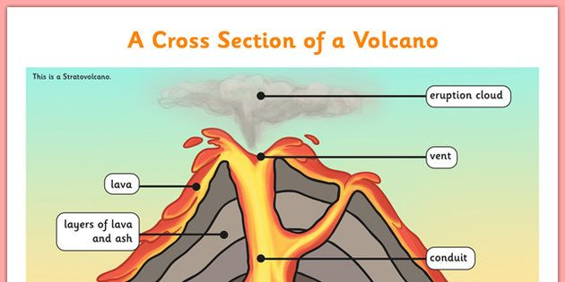 Volcano Cross Section Display Poster Volcano Projects Volcano Science For Kids