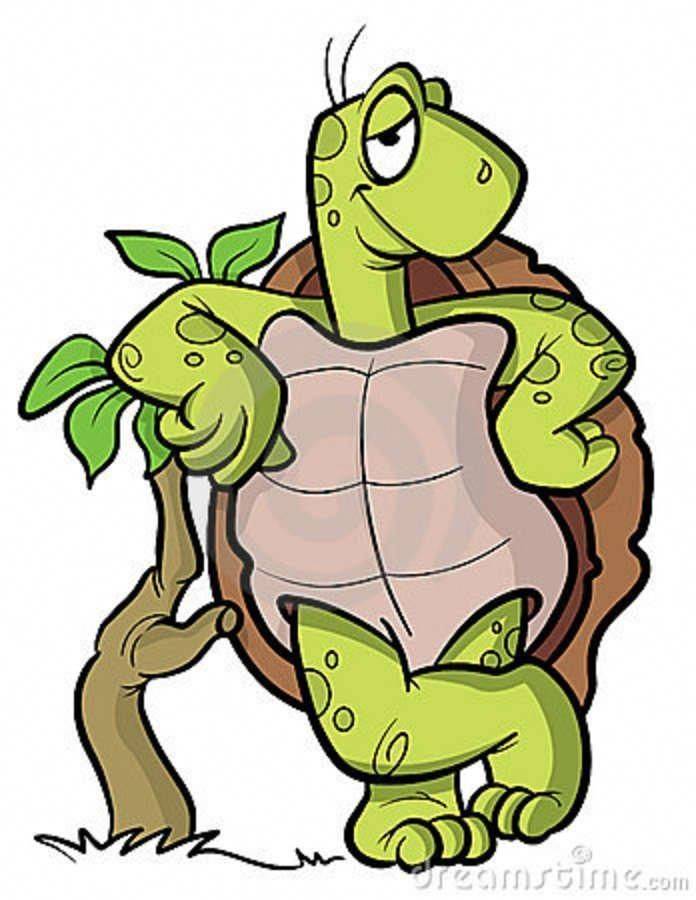 Image result for tortoise cartoon | Turtle drawing ...