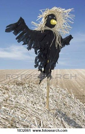 Scarecrow In A Field View Large Photo Image Diy halloween - halloween scarecrow ideas