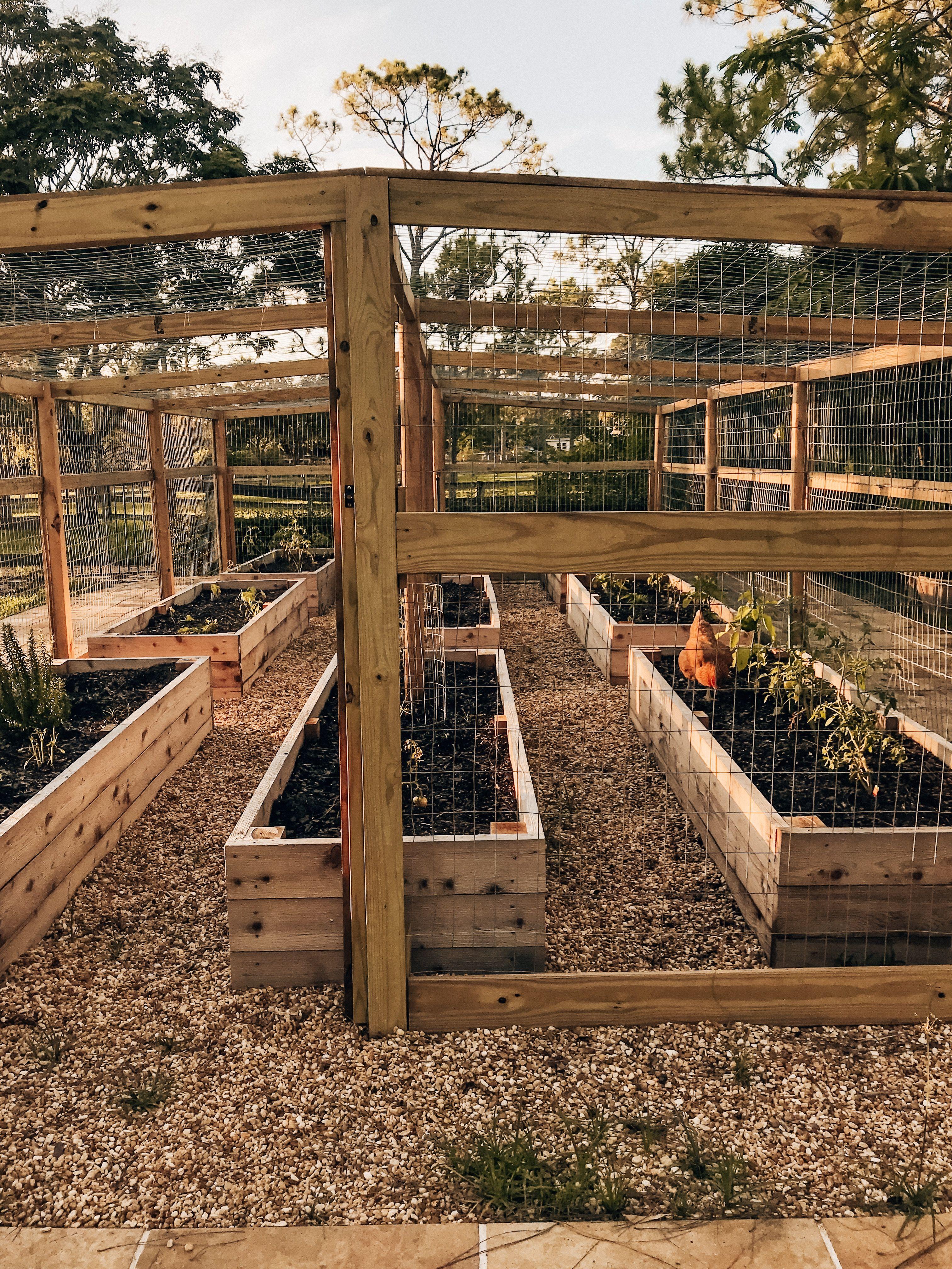 Introducing the Garden -   22 enclosed garden beds ideas