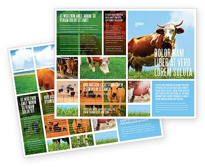 Agriculture Brochure Templates in Microsoft Publisher Adobe – Illustrator Brochure Template