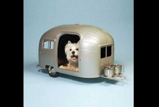 Modelos de casas para cachorros. (Foto: Divulgação)