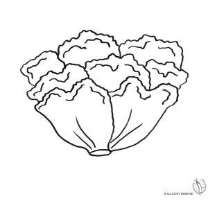 Disegno di insalata da colorare disegni di alimenti da for Bocca da colorare