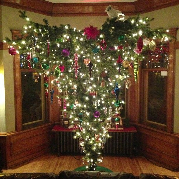 17 Best images about Merry Christmas!! on Pinterest | Christmas trees,  Christmas eve and Christmas decorations