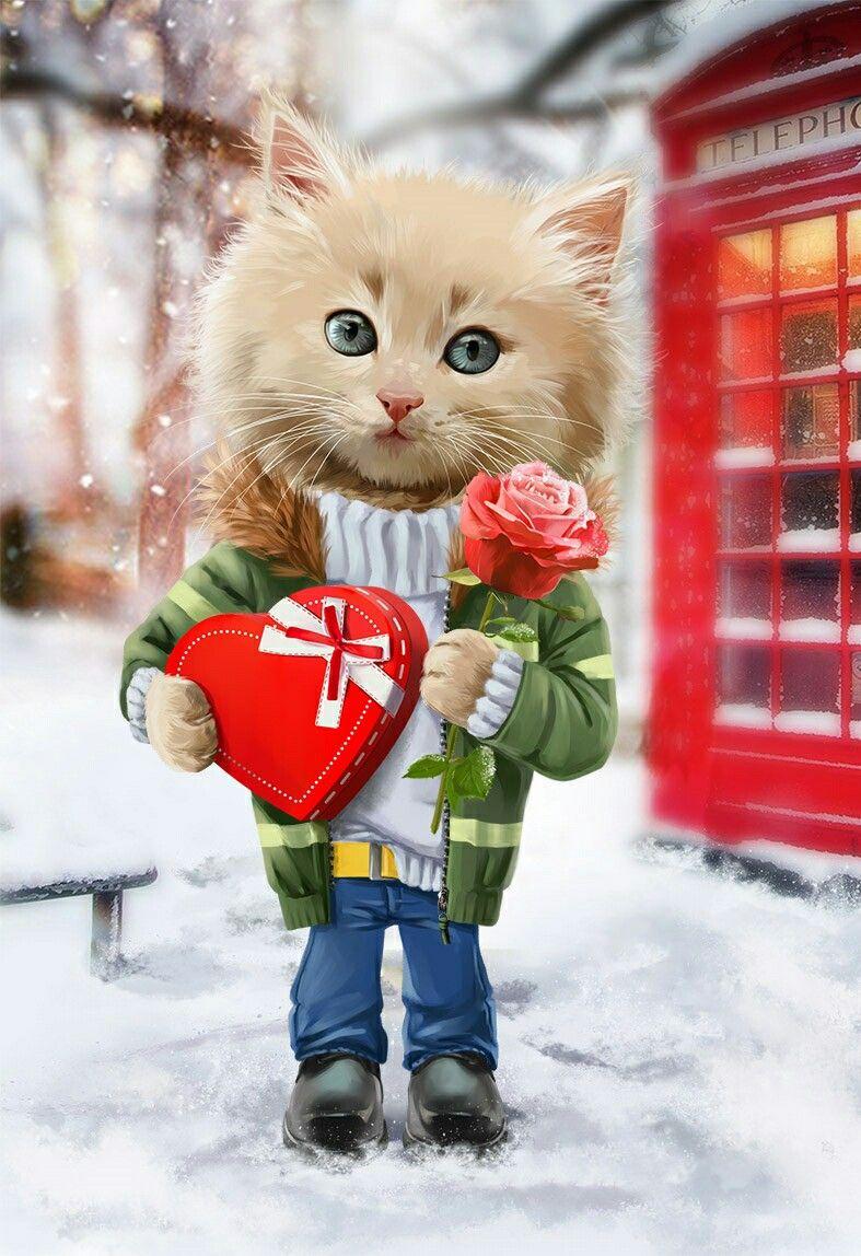 С 14 февраля картинки с кошками