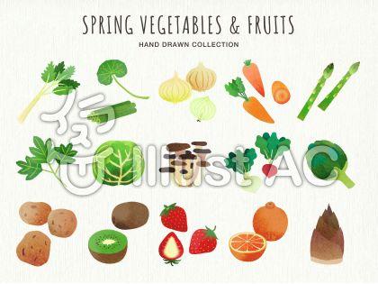 野菜 水彩イラスト 無料イラストなら イラストac 食べ物
