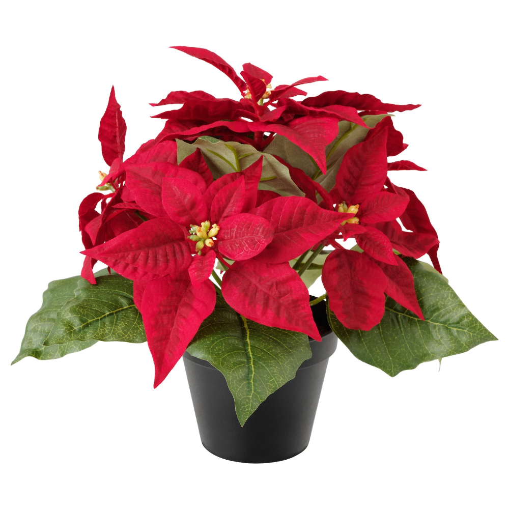 Ikea Vinterfest Artificial Potted Plant Poinsettia Red Lifelike Artificial Plant That Remains Looking Fr Artificial Potted Plants Plants Artificial Plants