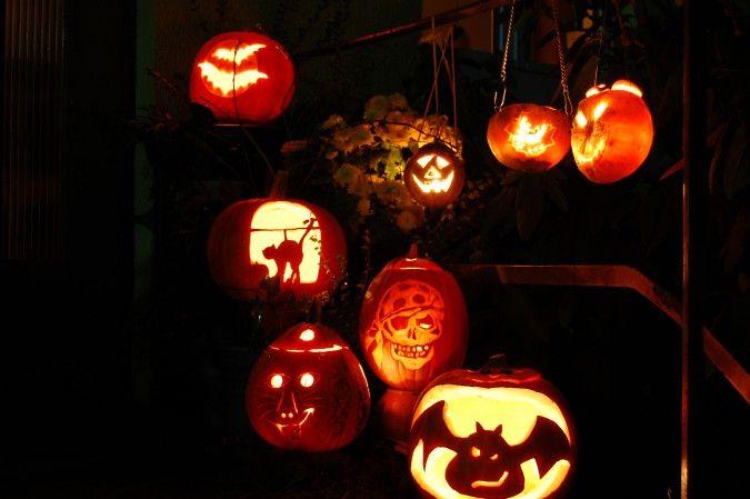 Gartendeko-Ideen für Halloween im Gartenhaus-GmbH-Magazin