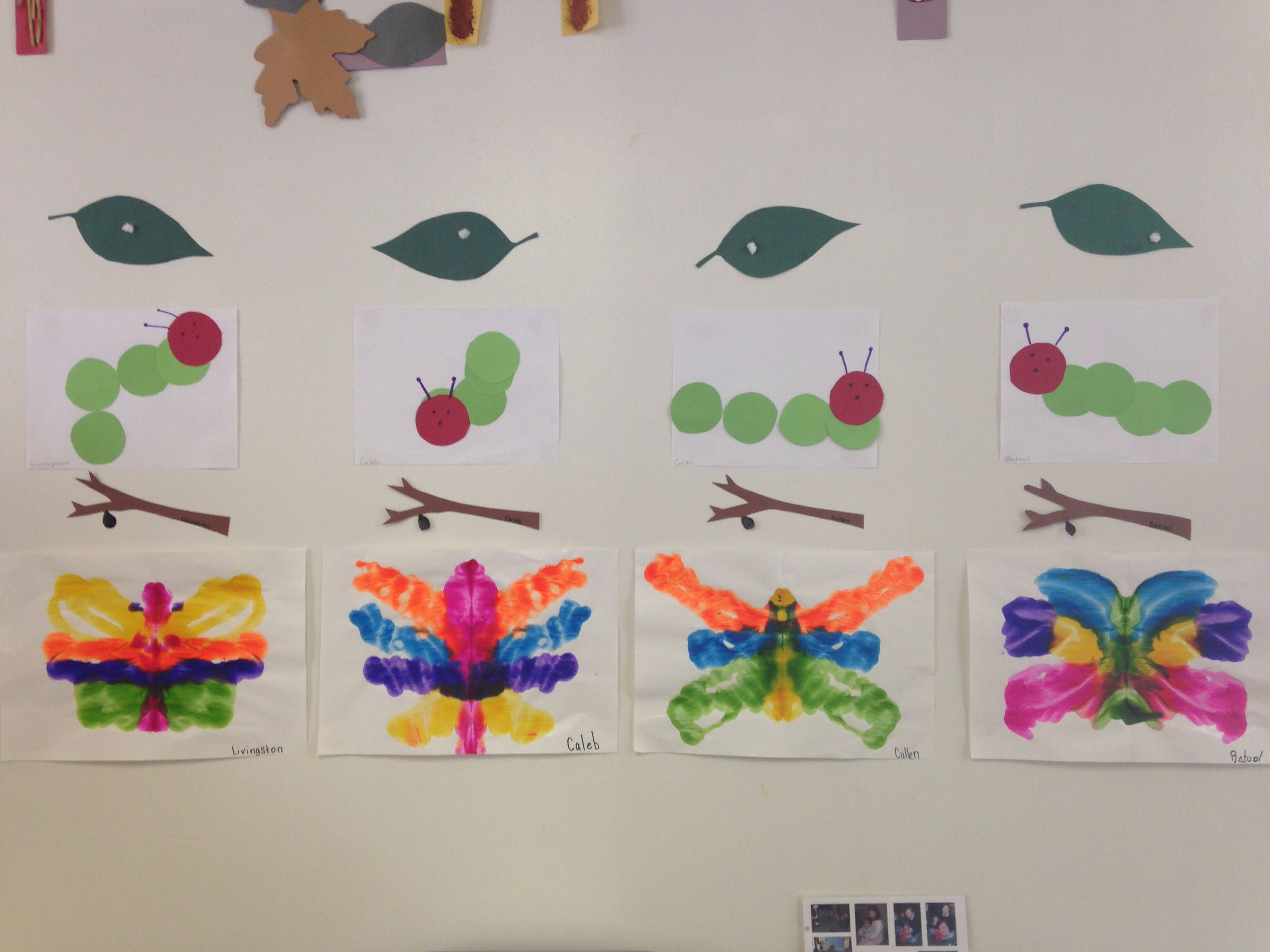 Life Cycle Of A Butterfly Pre K