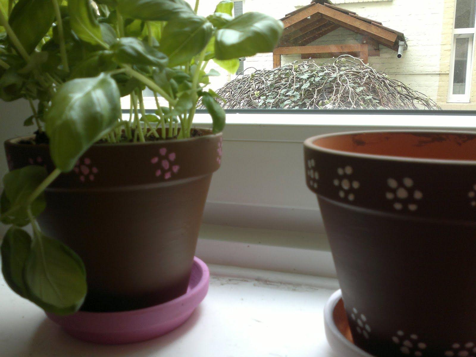 eatloveandlive - Paint flower pots