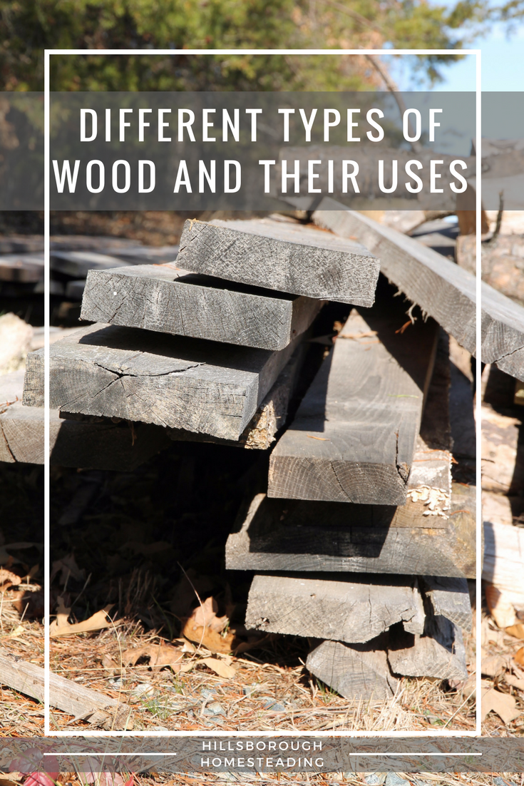 Different Types Of Wood And How To Use Them Diy Urban