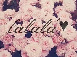 Resultado De Imagen Para Frases Con Fondo De Flores Tumblr Floral