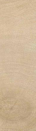 Wood Age Porcelain Tile Heartwood Field