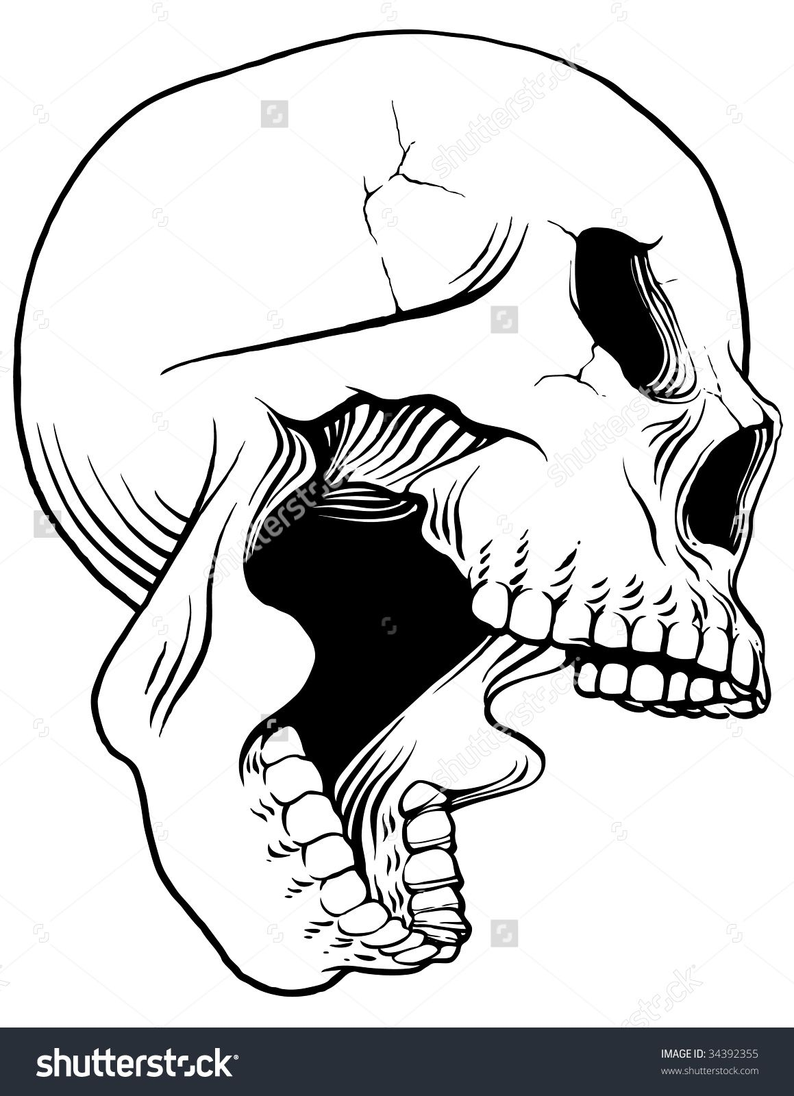 It's just a photo of Luscious Skull Profile Drawing