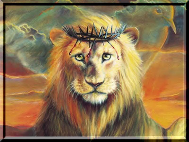 lion of Judah | Lion of Judah photo Lion_of_Judah.jpg