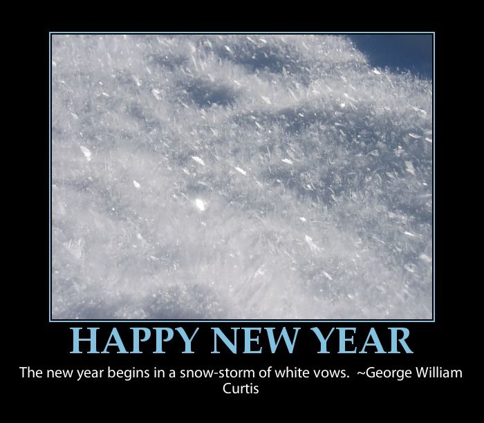 Happy New Year Funny Quotes: Happy New Year -resolutions Funny